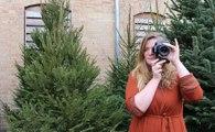 Saint-Louis : Lucile K, photographe à la Cité Danzas