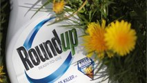 US Gov: Roundup Verdict Should Be Overturned