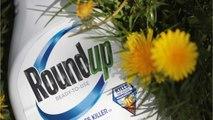 US Gov: Roundup Verdict Should Be Overturned