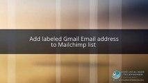Add labeled Gmail Email address to Mailchimp list-geolocalisetelephones
