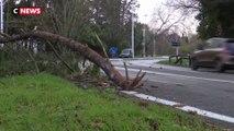 La tempête Fabien a frappé le Sud-Ouest