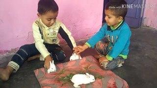 Kids playing playing kids