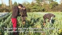 A Dijon, les squatteurs des Lentillères en lutte contre le béton
