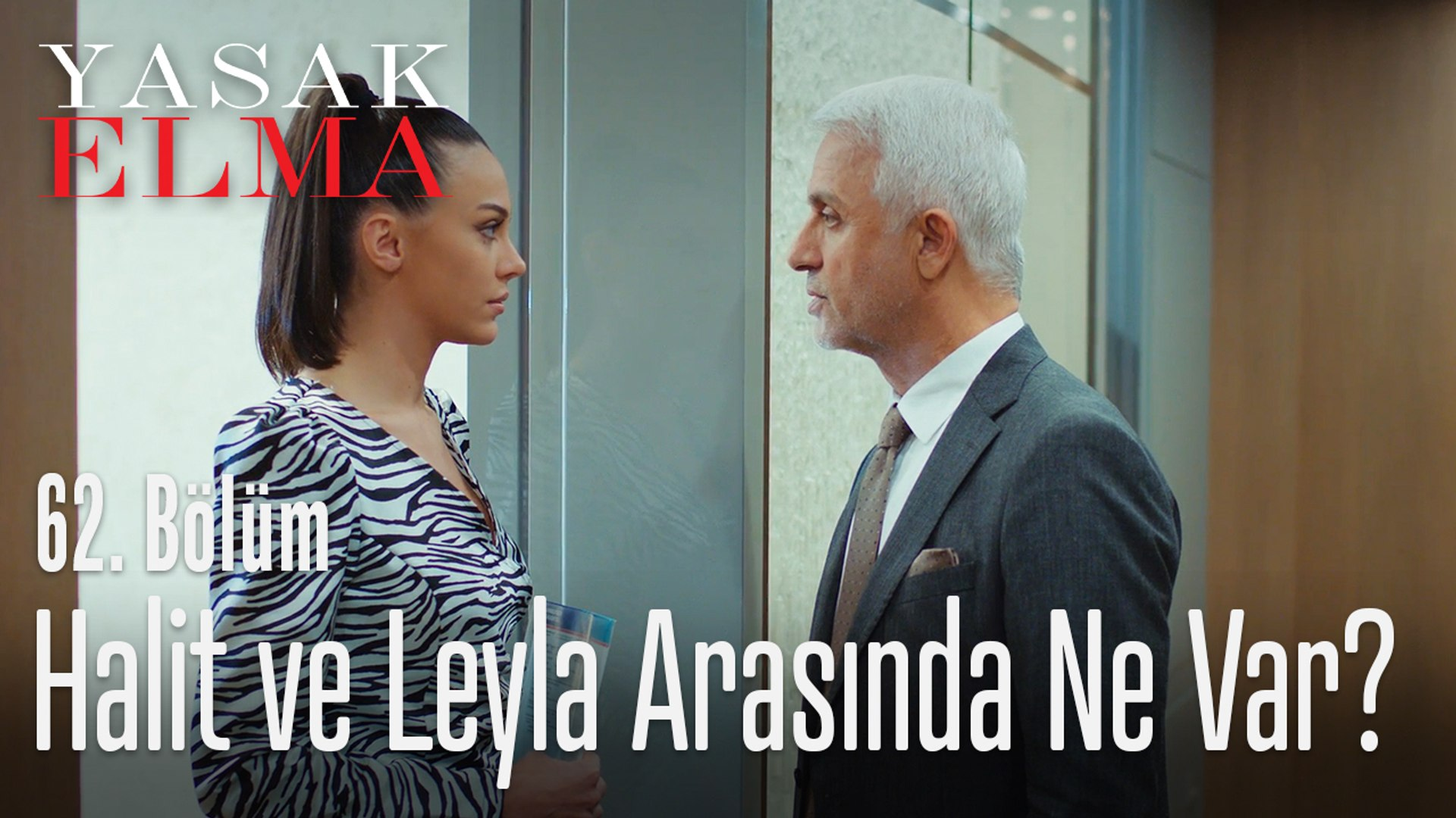 Halit ve Leyla'ya kurulan komplo! - Yasak Elma 62. Bölüm