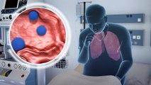 Excess body weight can weaken efficacy of flu vaccine