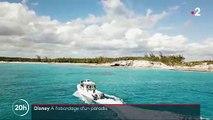 Disney provoque la colère des défenseurs de la nature après avoir acheté une île des Bahamas pour en faire un énorme complexe hôtelier avec 15.000 personnes par semaine
