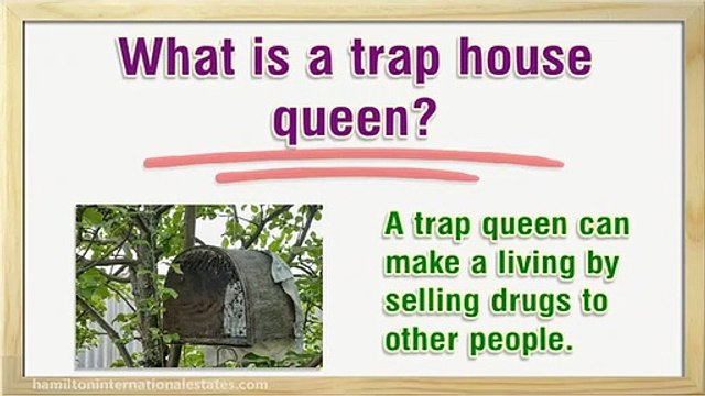 What is a trap house