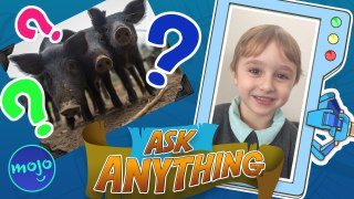Which Animal Eats The Most?