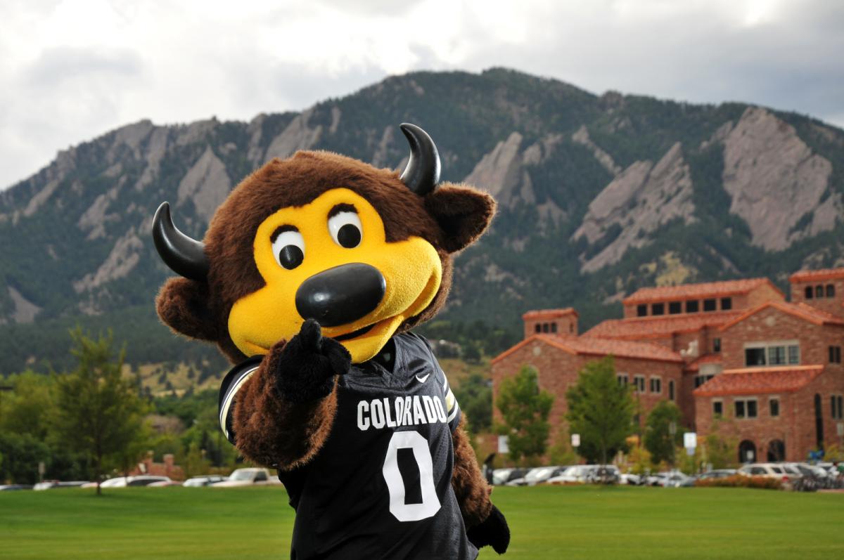 Chip, la mascota de Colorado Buffaloes, se pega un 'tiro' en las pelotas