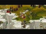 Télé Dofus: Rubrique Combat n°2