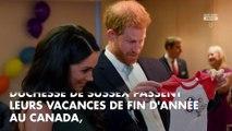 """Prince Harry et Meghan Markle déposent la marque """"Sussex Royal"""": nouveau commerce?"""