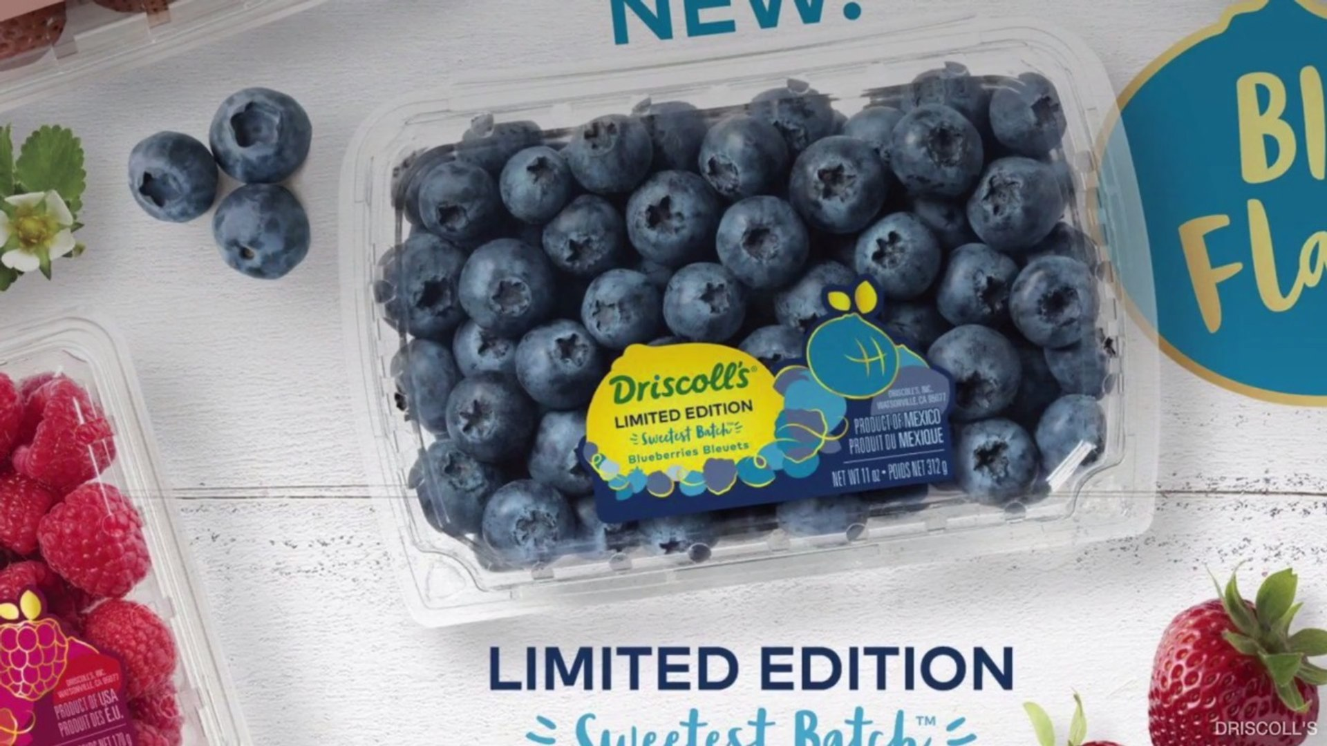 Driscoll's New Blueberries Promise to Be the Sweetest You'll Ever Taste -  video dailymotion