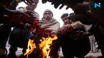 UP's Kanpur touches zero degrees, Delhi to get cold wave relief till January 4