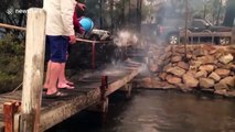Family forced to shelter on boat for more than 10 hours as wildfires sweep through Australian town ofMallacoota