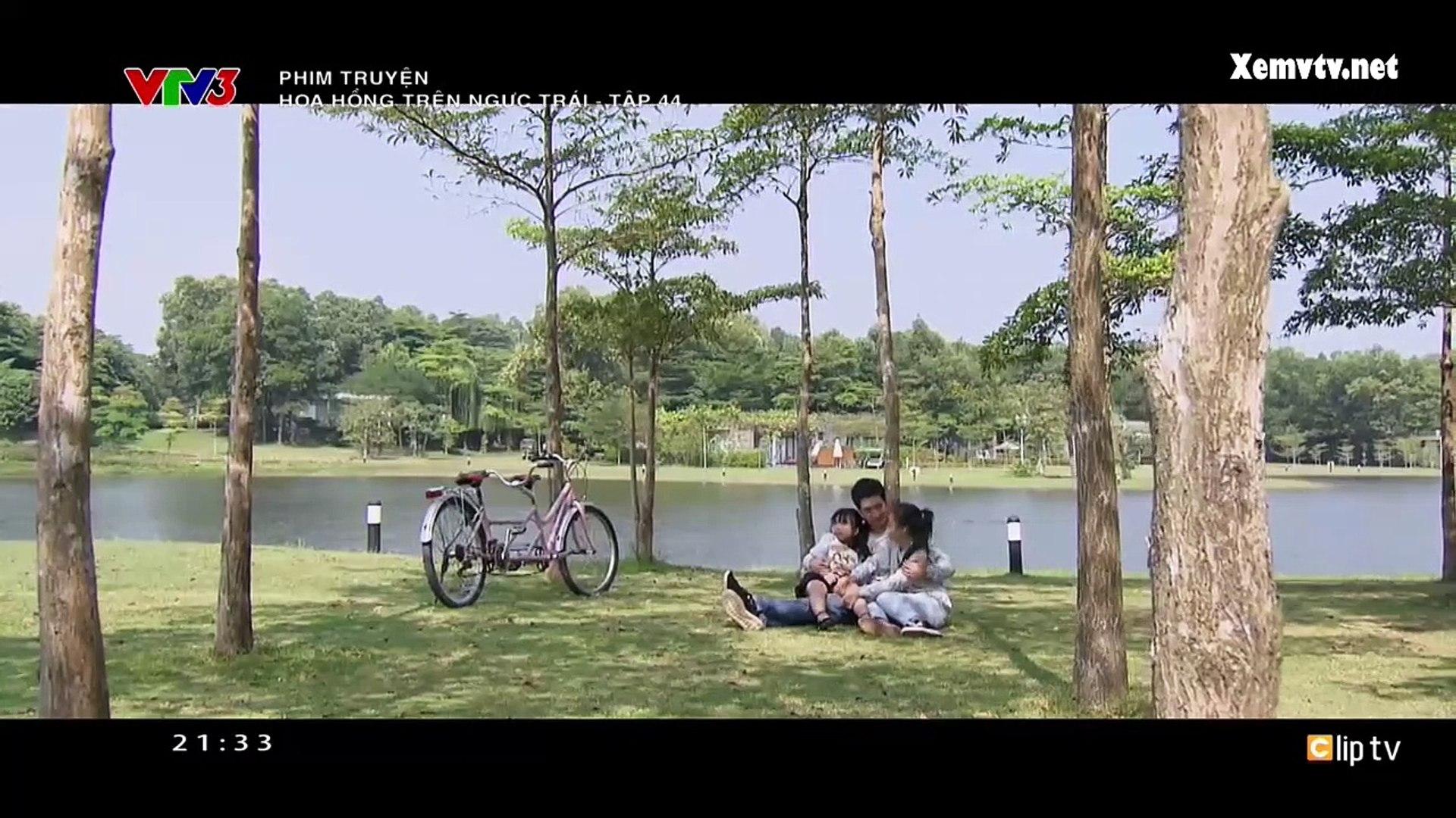 Hoa Hồng Trên Ngực Trái Tập 45 - Phim Việt Nam 2019