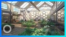 全球首座樹葬中心即將正式啟用