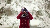 Tips on taking stunning winter photography