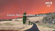 Australia bushfire turns sky red in New South Wales
