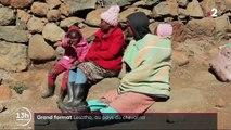 Lesotho : un pays où le cheval est roi