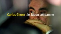 Carlos Ghosn : le Japon condamne sa fuite « injustifiable »