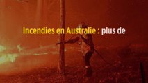 Incendies en Australie : plus de 480 millions d'animaux sont morts