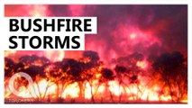 Australia's bushfires are creating freak thunderstorms