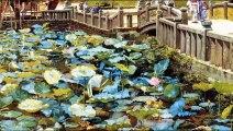 (たおやかインターネット放送)たおやか瓦版まるで写真のよう明治初期の日本の風景Japanese landscape in the early Meiji era as if it were a photo