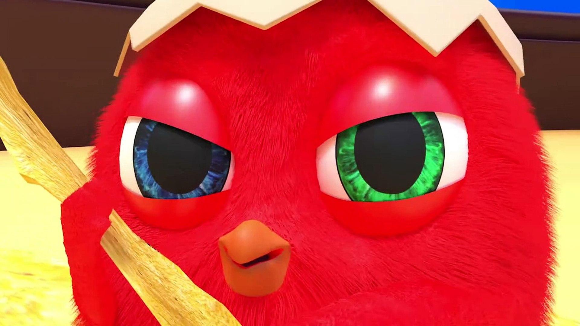 CucKoo Cartoon  Cuckoo Chicken 2020 - Part 5 Drôle de bande dessinée pour les enfants 2020
