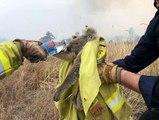LBC with Andrew Castle 5Jan20 - Australia bushfires & climate change
