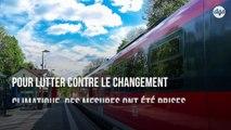 L'Allemagne baisse les tarifs des voyages en train sur longue distance en réponse à la crise climatique