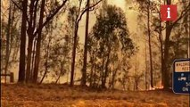 Firefighters continue to battle bushfires in Australia amid global concern over crisis