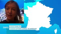 L'association Coral Guardian : Coco Tamlyn