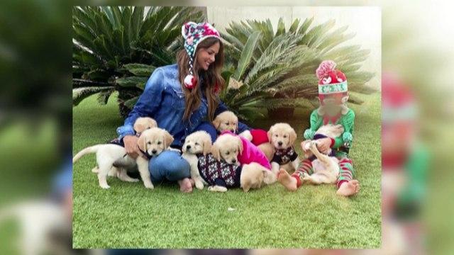 Romina Belluscio aclara la polémica de sus cachorros