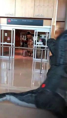 Des dinosaures dans l'aéroport