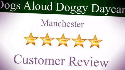 Dogs Aloud Doggy Daycare Manchester Outstanding Five Star Review by C G