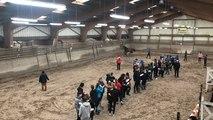 Formation régionale de juges de chevaux de sport