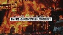 Des milliers d'habitants de l'Australie évacués à cause des terribles incendies