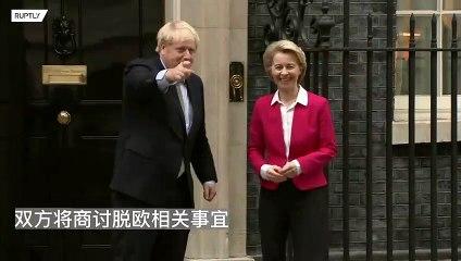 英国首相约翰逊会见欧盟主席冯德莱恩