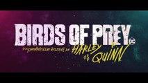BIRDS OF PREY (2020) Bande Annonce 2 VF - HD