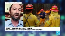 The ecological impact of the Australia bushfires