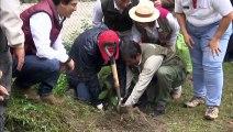 Campaña de reforestación para proteger Machu Picchu