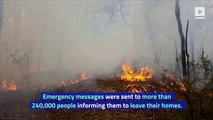 Australia Urges Nearly 250,000 to Evacuate Due to Massive Bushfires