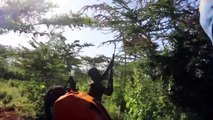 Swarms of locusts threaten food security in Kenya: govt