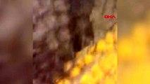 Kırklareli lüleburgaz'da silahlı kavga 1'i polis 2 yaralı - ek