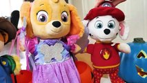 Paw Patrol Baby Pup Halloween Toy Learning Video for Kids-
