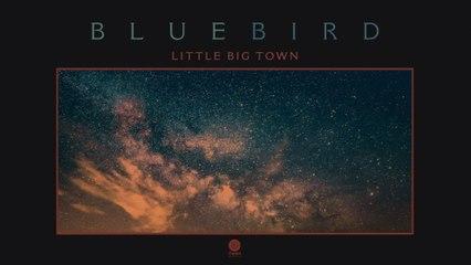 Little Big Town - Bluebird
