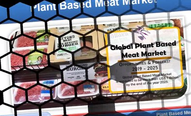 Plant Based Meat Market will be US$ 7 Billion globally by 2025
