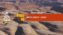 Dakar 2020 - Étape 9 / Stage 9 - Landscape of the day