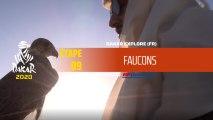 Dakar 2020 - Étape 9 - Faucons