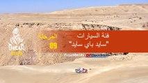 داكار 2020 - المرحلة 9 (Wadi Al-Dawasir / Haradh) - ملخص فئة السيارات  / سايد باي سايد